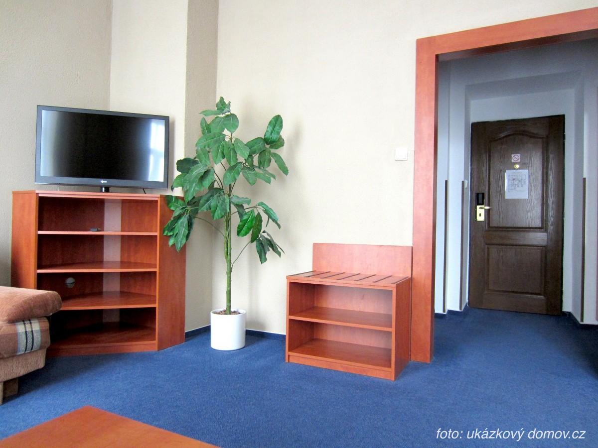 Bellevue_Tlapak livingroom