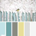 Gray yellow blue1